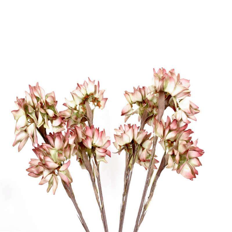 Κλαδί Κρίνοι 5225 1-720-92-007 98cm Brown-Red Etiquette