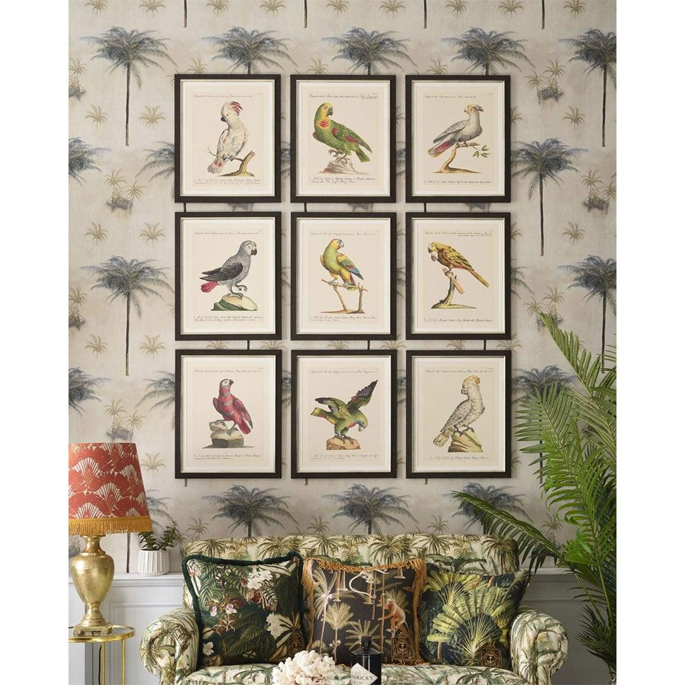 Κάδρο Parrots Of Brasil I FA13211 40X50 MindTheGap